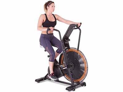 Octane Fitness Airdyne ADX Fan Bike, Black