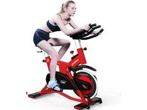 Pooboo Belt Drive Indoor Exercise Bike
